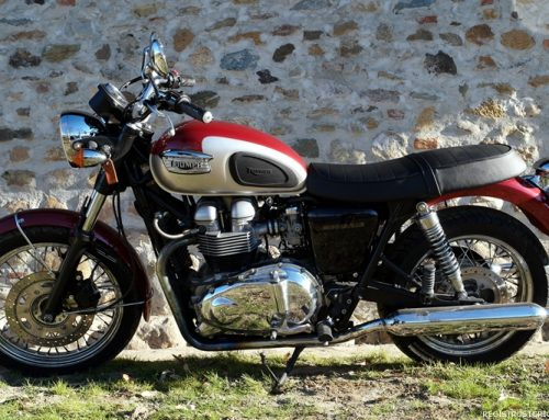 Willow, la mia Triumph Bonneville 799 cc, red scarlet I ed. 2001